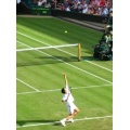 Wimbledon: Radwańska trafi do finału?